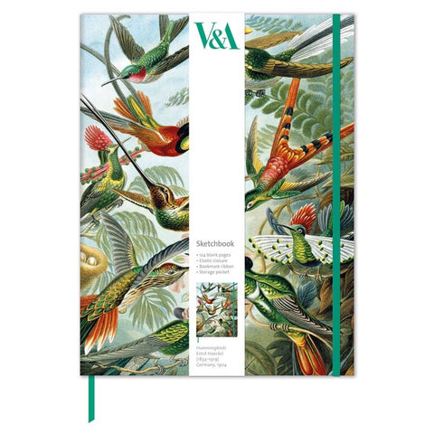 midoco.ca: Museums & Galleries Hardcover Sketchbook - Haeckel Hummingbirds