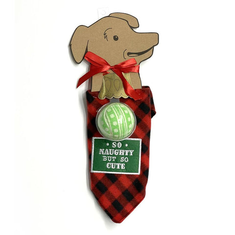 midoco.ca: Grasslands Road Pet Bandana & Toy Ball Set - Large