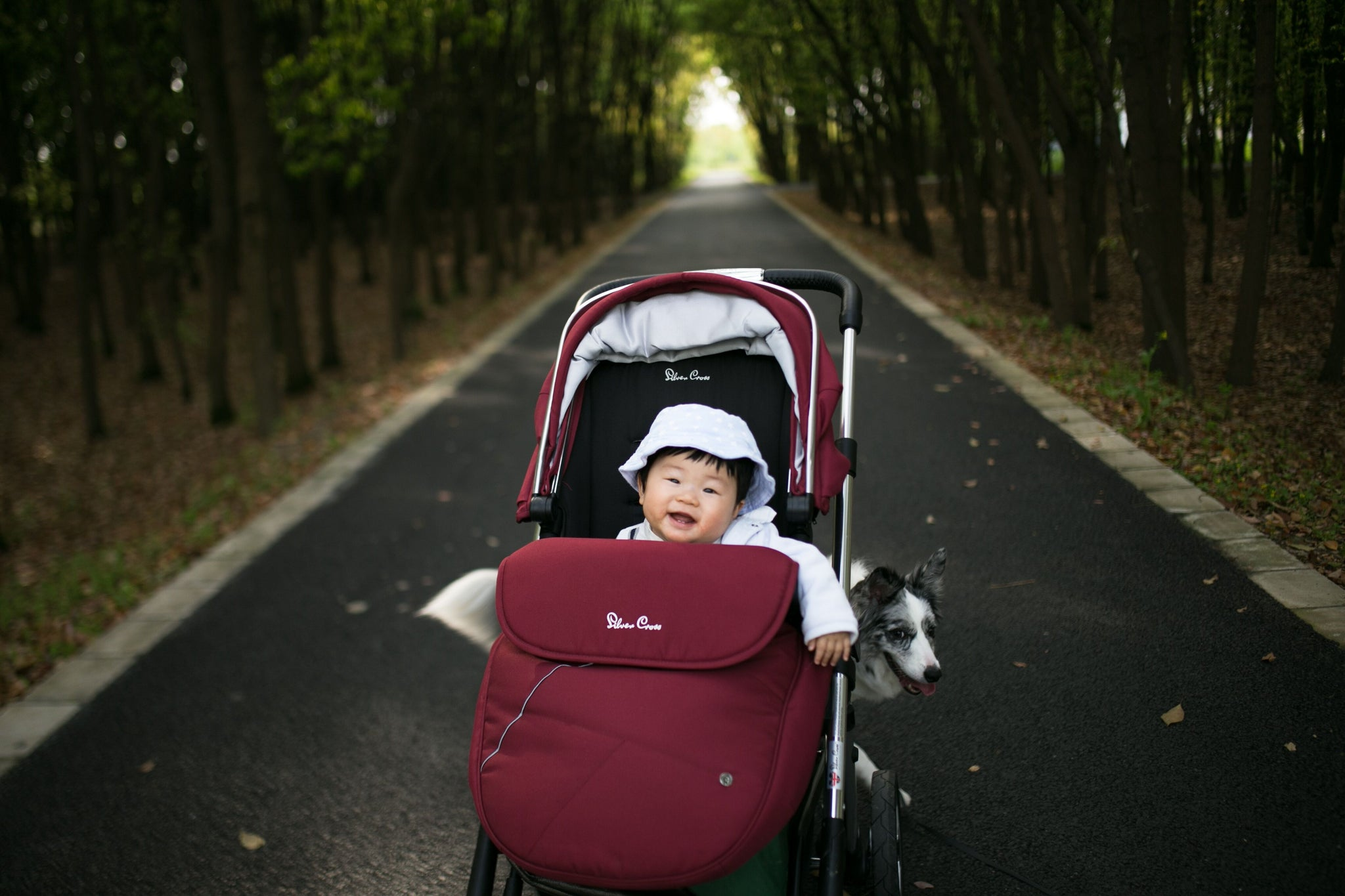 Pram Safety & Buying Guide
