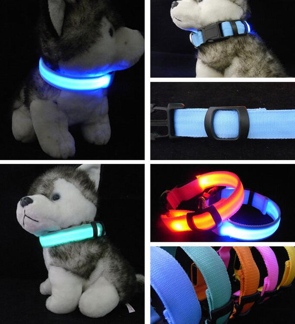 Nylon LED Pet Dog Collar Night Safety Flashing Glow In The Dark