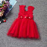 New XMAS Baby Girls Party Lace Tulle Flower Gown Fancy Bridesmaid Dress