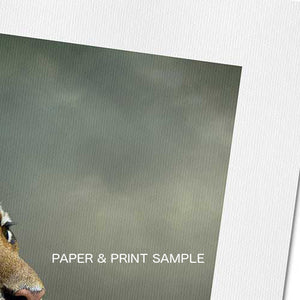 Puppy Howl - Fine Art Canvas Print