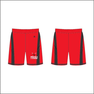 Men's Collegiate Shorts 13