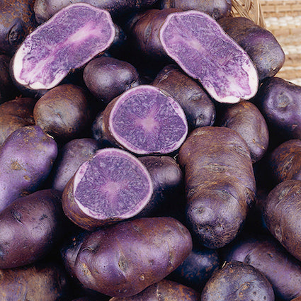 Potatoes - Purple Majesty 1kg