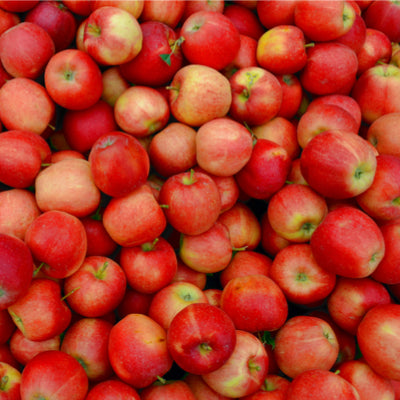 Apples Pink Lady - 1kg