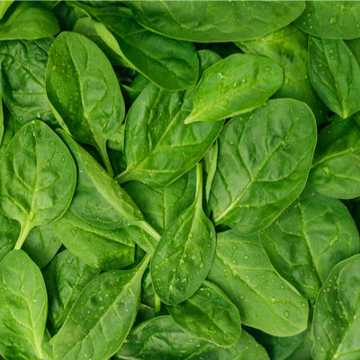 Spinach: baby - 120g
