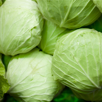 Cabbage: Green Half