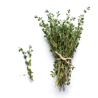 Thyme bunch