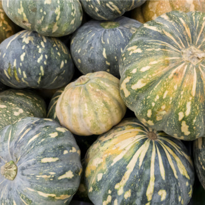 Pumpkin:Jap or Grey 1kg