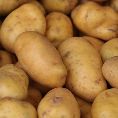 Potatoes - Dutch Cream 1kg