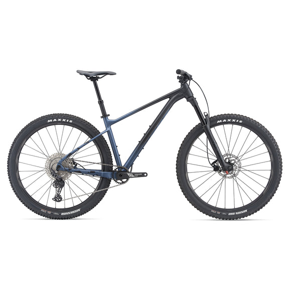 Giant 2021 Fathom 29 2 - Steed Cycles