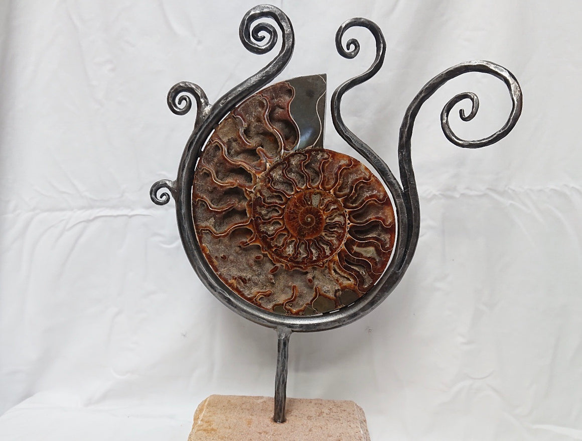 """Flow 2"" Ammonite And Iron Sculpture"