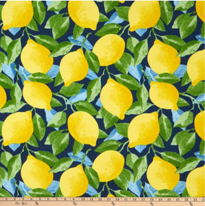 Citrus Outdoor daybed cover mattress cover lemons twin mattress cover outdoor mattress cover day bed porch swing cover citrus garden print