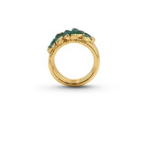 Fenomena Bang ring
