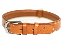 CHEVALIER lightbrown dog collar