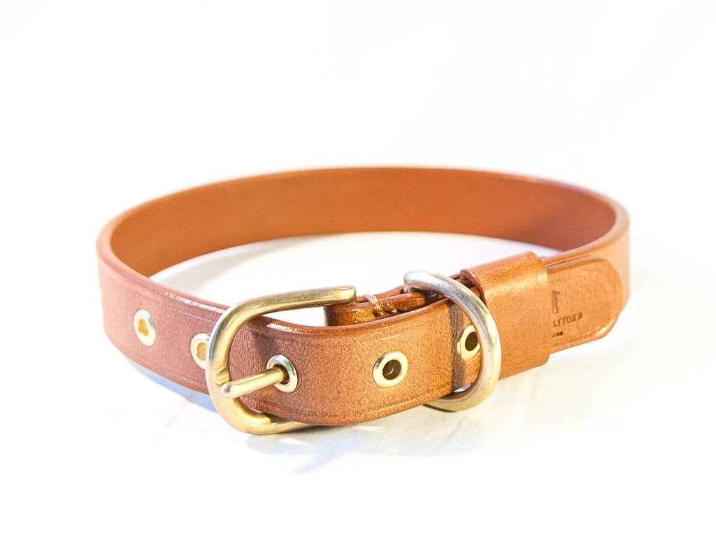 TIMELESS light brown dog collar