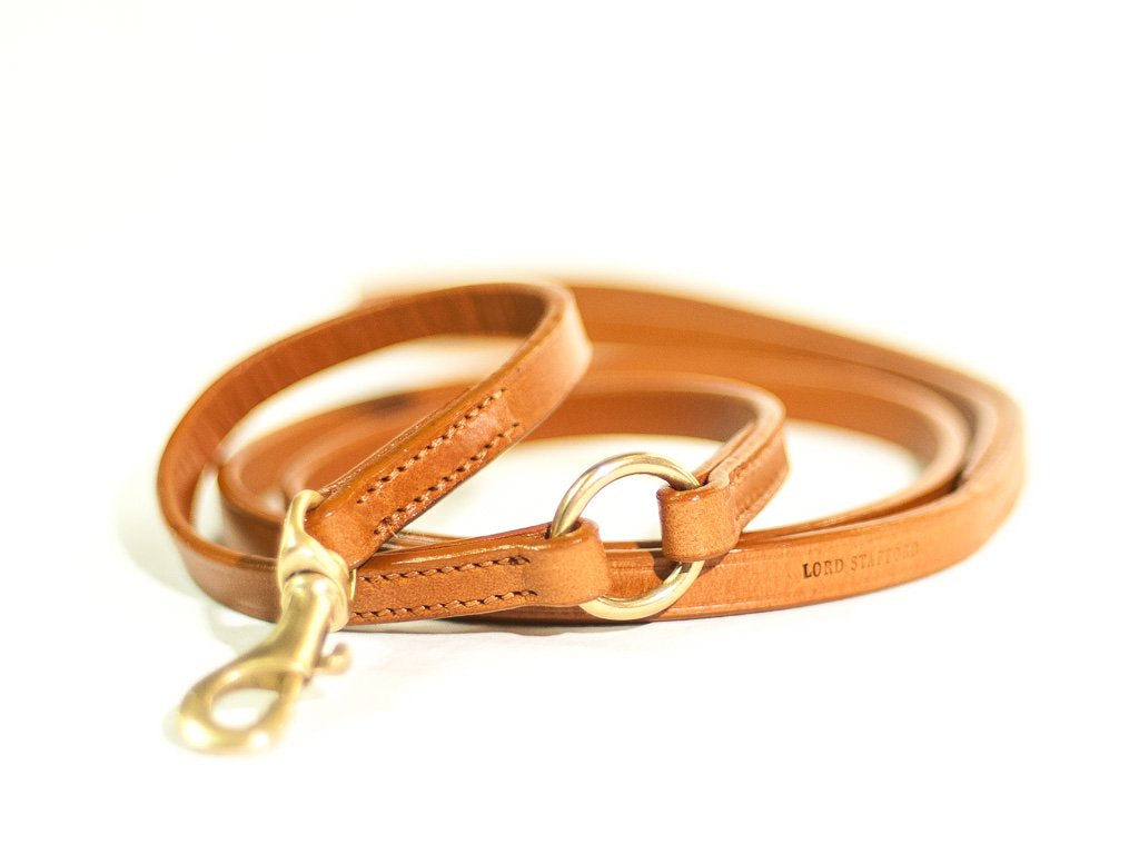 TIMELESS lightbrown dog lead