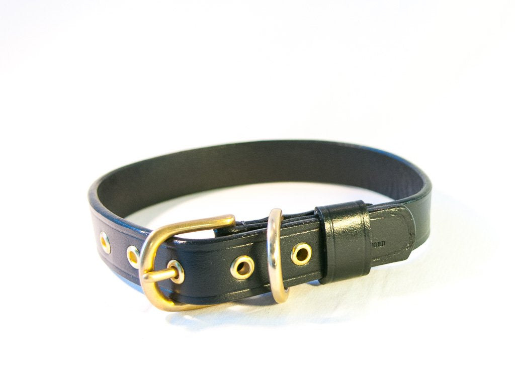 TIMELESS black dog collar