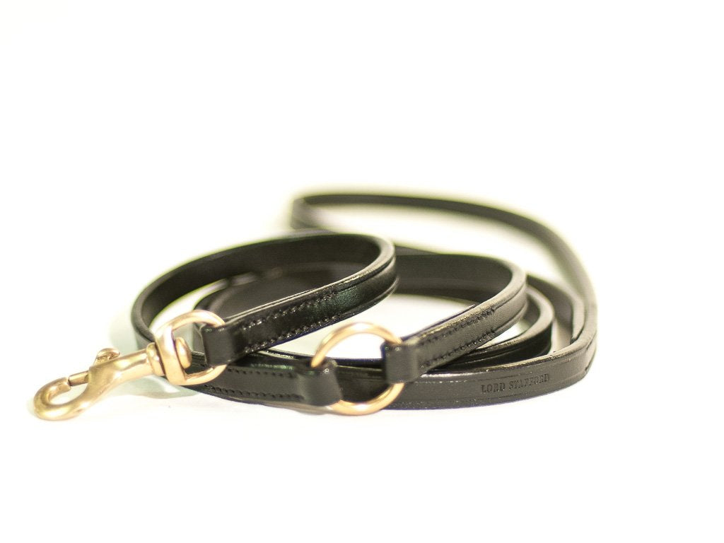 TIMELESS black dog lead