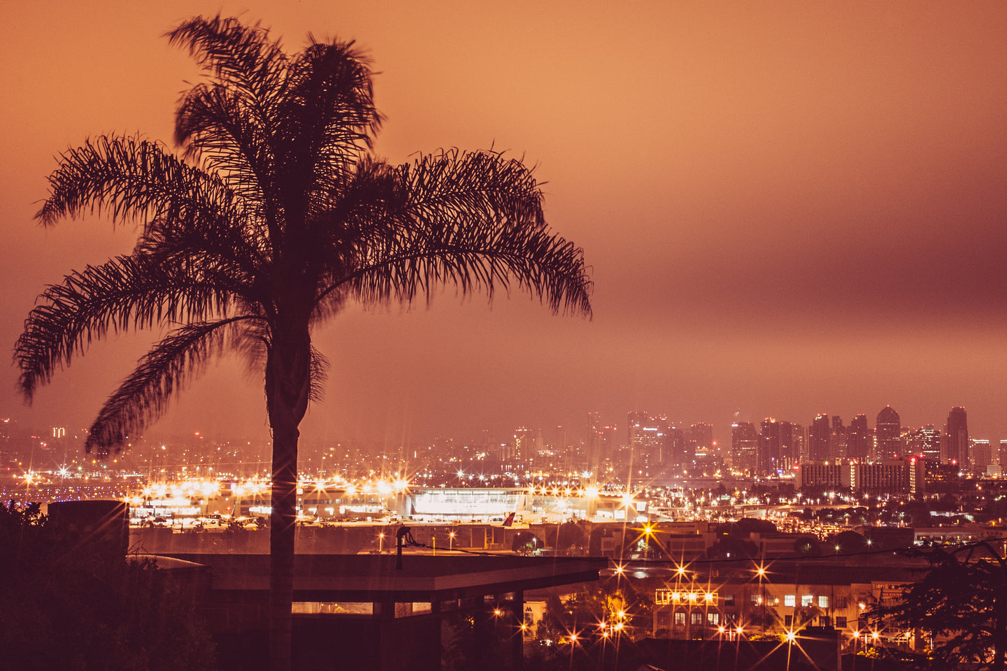 SAN DIEGO NIGHTS