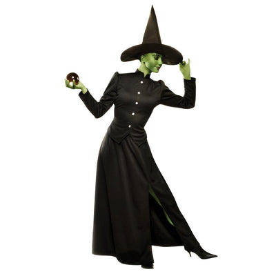 Franco American Novelty Company Classic Witch Adult Costume