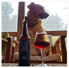 Red The Craft Beer Dog IG Post