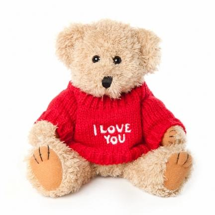 TEDDY - I Love You T-Shirt Bear