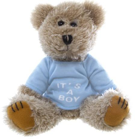 TEDDY - It's A Boy Bear