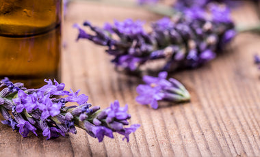 Healing with Lavender