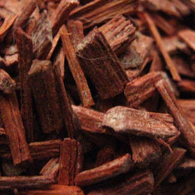 Antique Sandalwood Fragrance