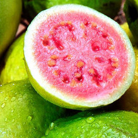 Passionfruit and Guava Fragrance