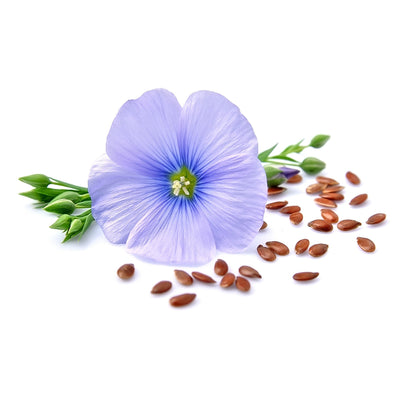 Flaxseed Oil, Organic - New Zealand