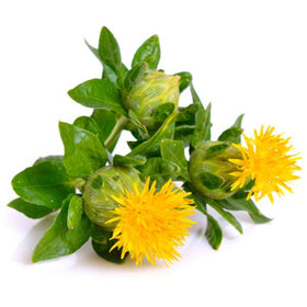 Safflower Oil, Cold Pressed - Organic