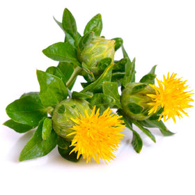 Safflower Oil - Refined