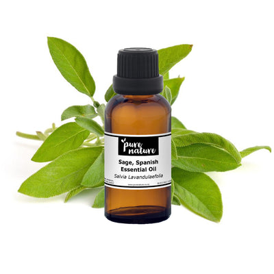 Sage, Spanish Essential Oil