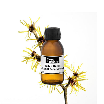 Witch Hazel Extract - Alcohol Free