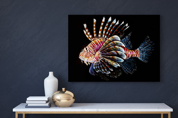 Lion Fish (Limited Edition Print 1/25)