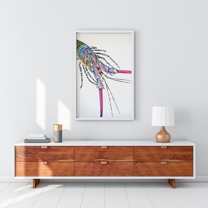 The Painted Crayfish (limited edition print)