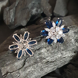 Rhodium Plated Earrings Adorned with White and Blue Stone (BAER0629)