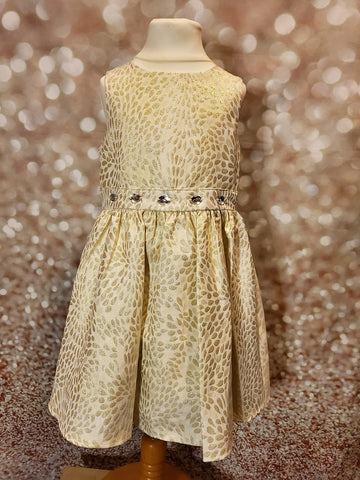 Gold Sparkle and Jewel Dress