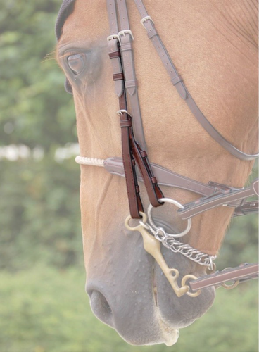 English co double bridle cheek pieces B919 i