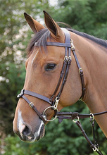 Working co removable flat bridle B162 i