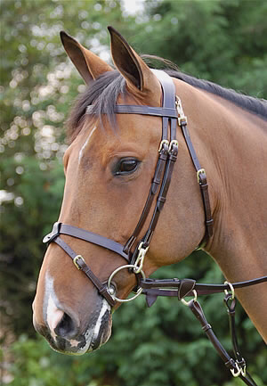 Dy'on Working co removable flat bridle B162 *