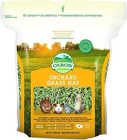Oxbow Orchard Grass Hay for Pets (15-Oz.)