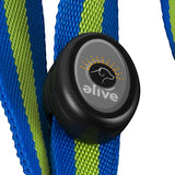 Elive LED Dog Leash (6-Feet)