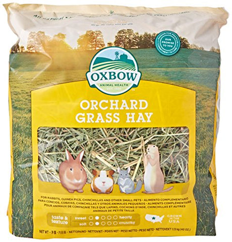 Oxbow Orchard Grass Hay for Pets (40-Oz.)