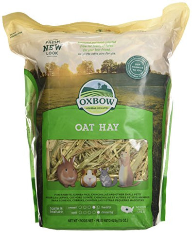 Oxbow Oat Hay for Pets (15-Oz.)