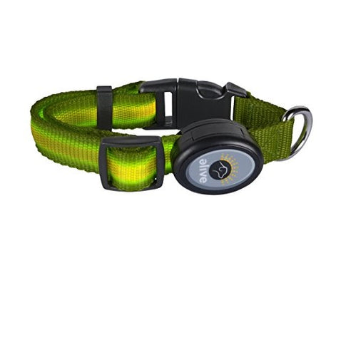Elive LED Dog Collar (S/SM/M/L, Green)