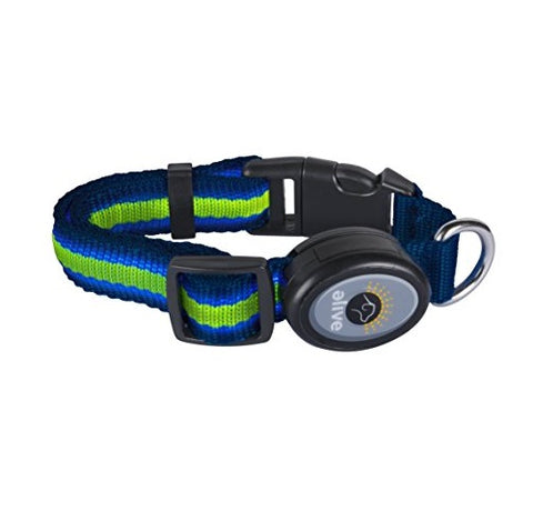 Elive LED Dog Collar (S,M, Blue/Green)