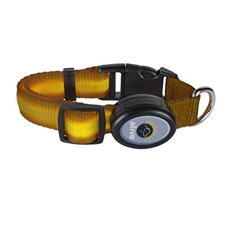 Elive LED Dog Collar (S,SM,M, Yellow)